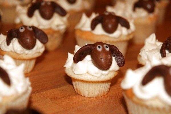 Shaun-Cupcakes